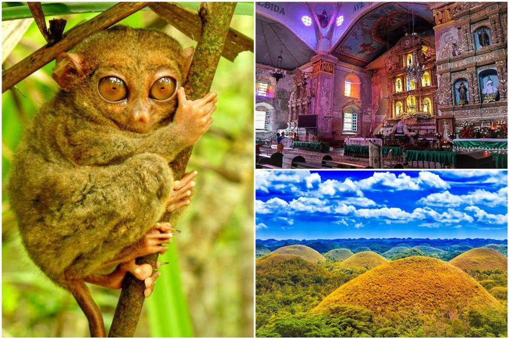 ボホール島の壮大な大自然を満喫! チョコレートヒルズ、ターシャ、最古の教会
