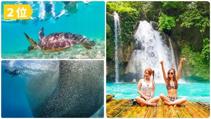 ウミガメと泳ぐ +モアルボアル&カワサン滝ツアー