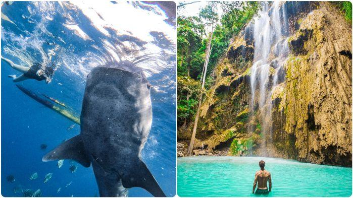 ジンベイザメと泳ぐ +ツマログ滝ツアー